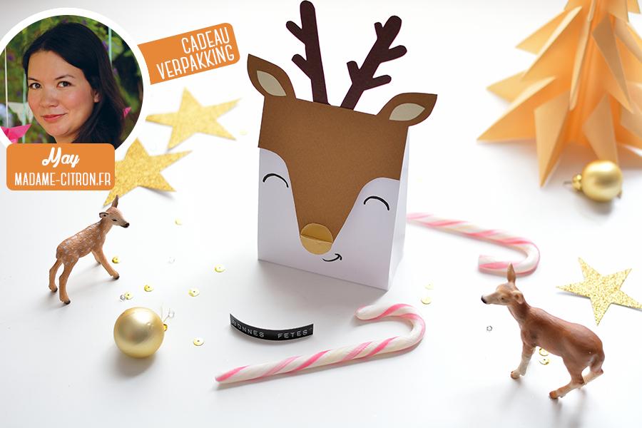 Kerstmis 2016 - Rendier cadeau doosjes - header