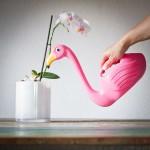 Cadeau voor vriendin - Flamingo gieter