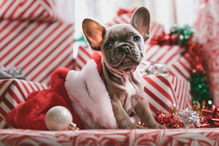 kerstcadeau voor je vriend