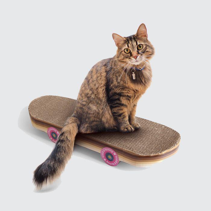 Krabpaal Skateboard voor katten