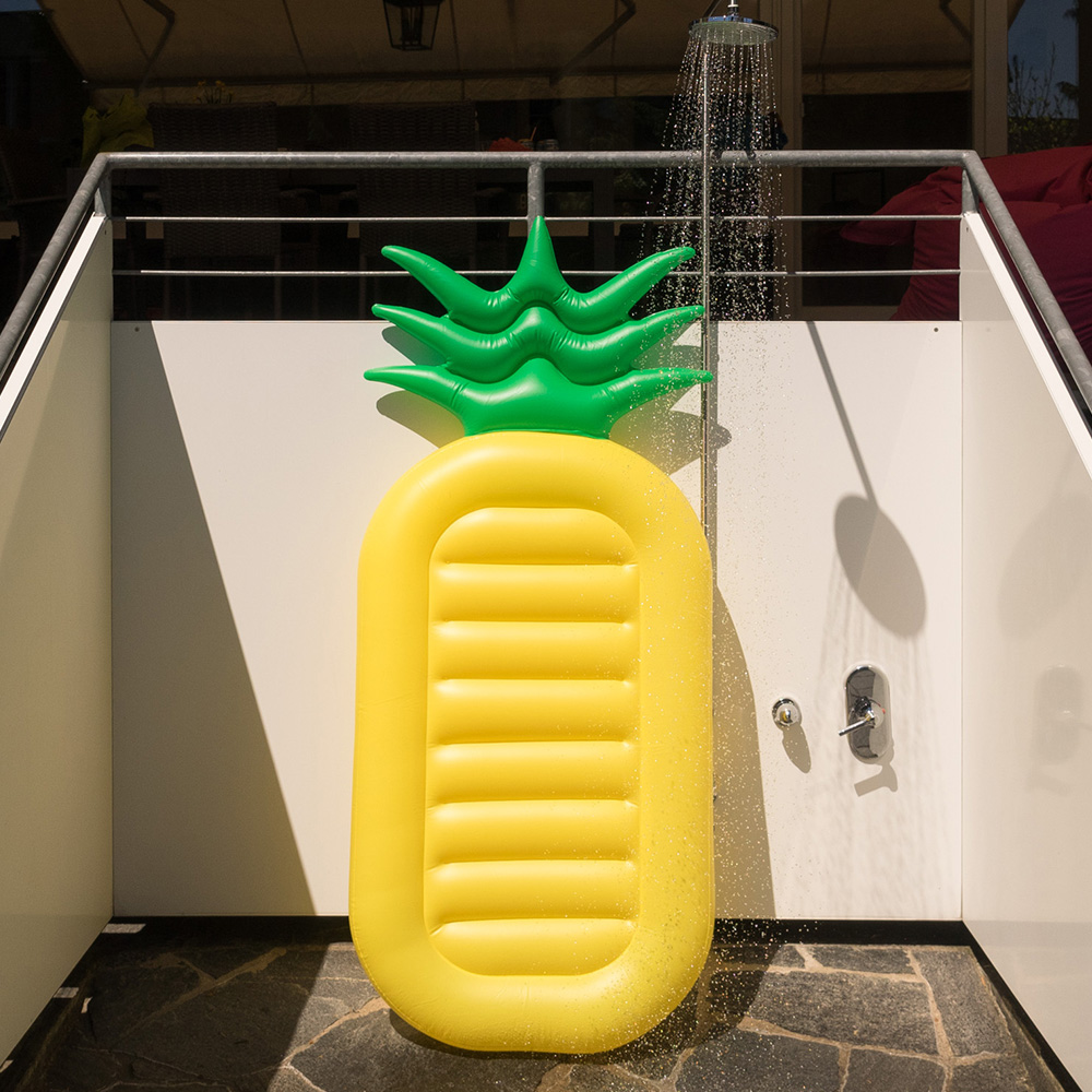 Ananas luchtmatras