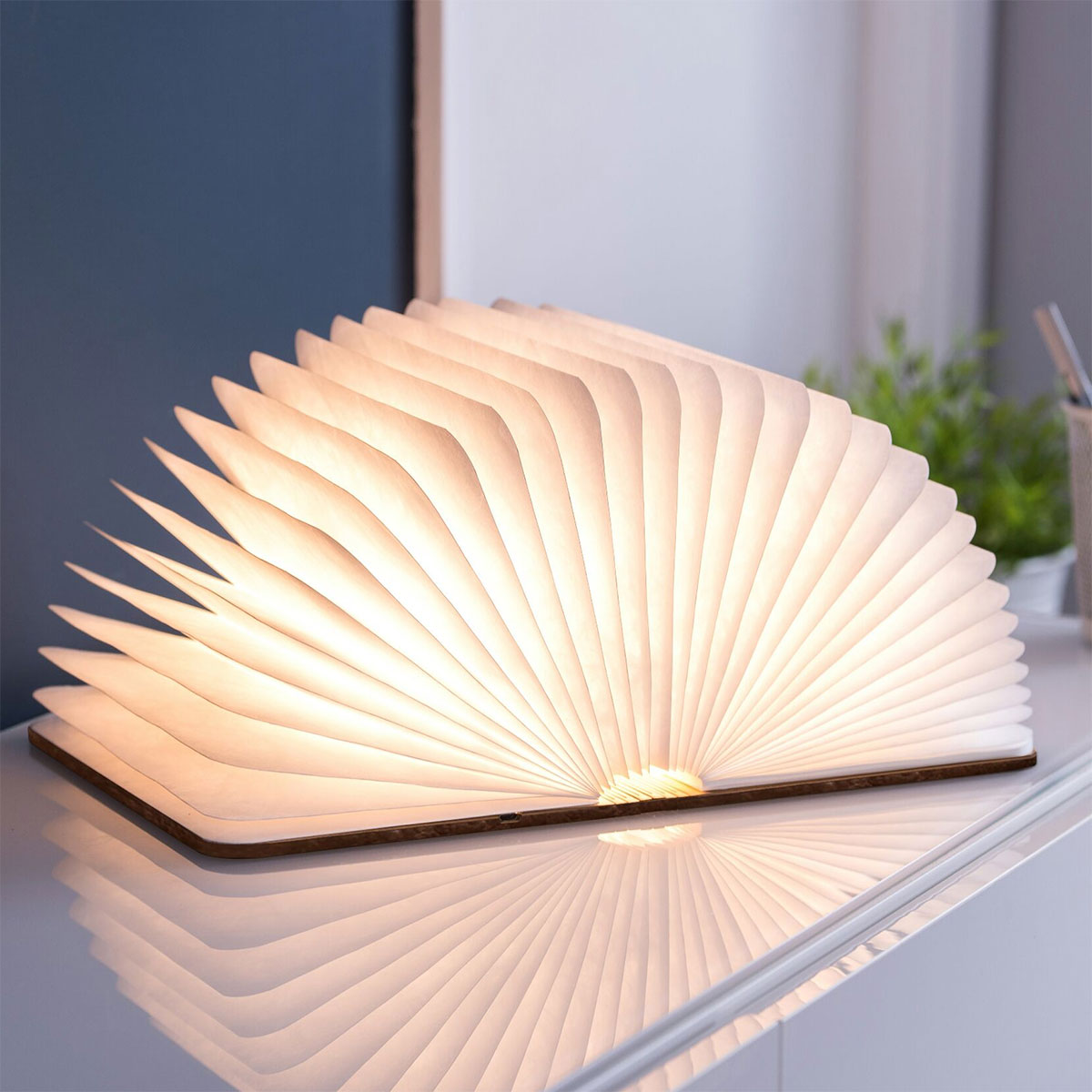 Personaliseerbaar boek licht voor koppels