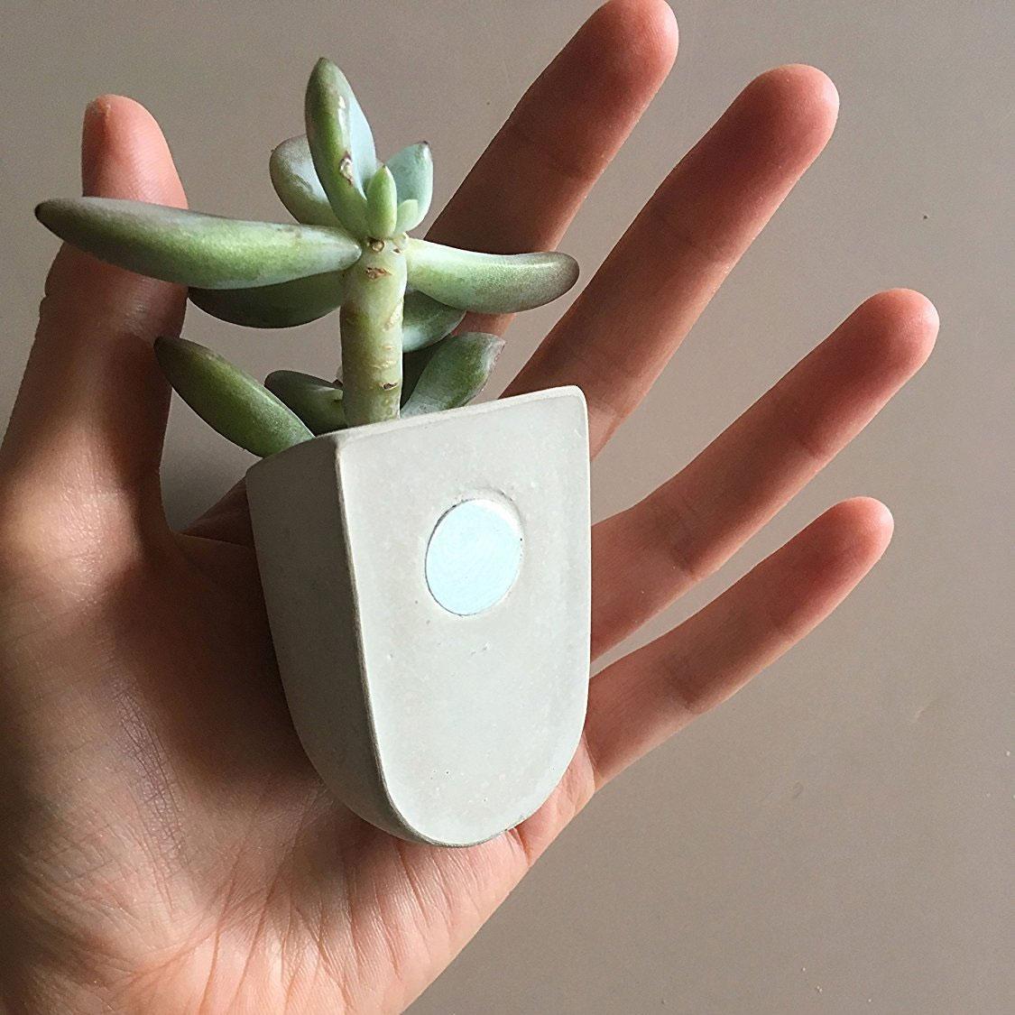 Magnetische Mini Bloempotten van Beton – set van 3