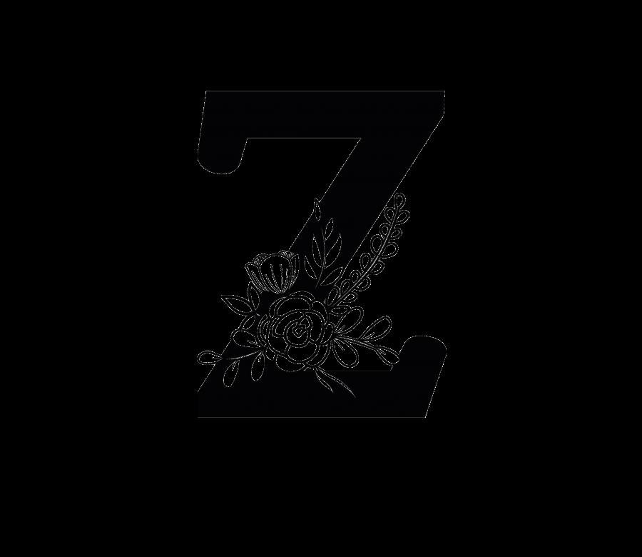 BAMOXT - Z