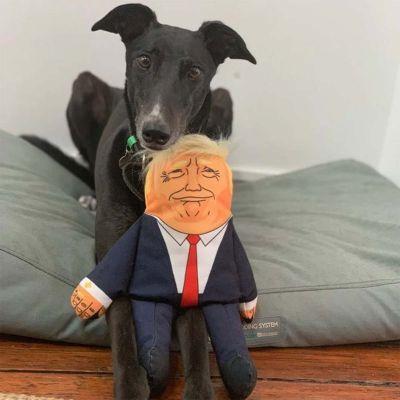 President hondenspeelgoed