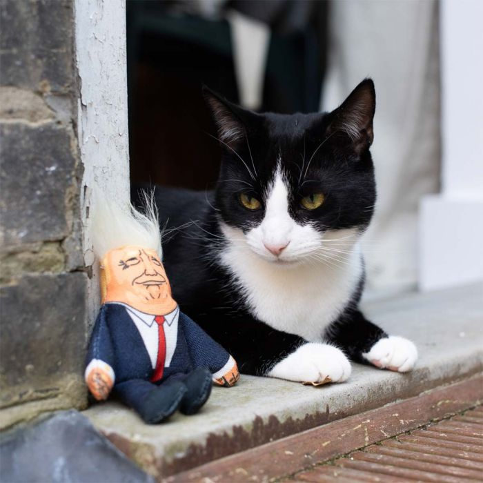President kattenspeelgoed