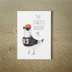 Street Pigeon wenskaart