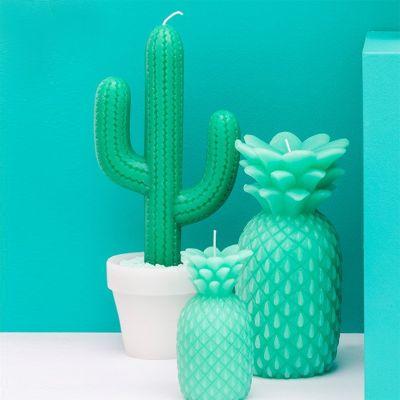 Grappige cadeaus - Cactus kaars