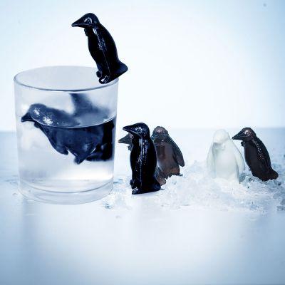 Bestsellers - Pinguïn coolers