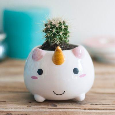 Romantisch cadeau - Eenhoorn mini bloempot
