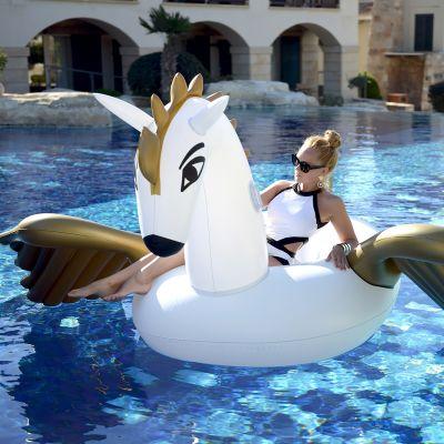 Outdoor - Opblaasbare Pegasus