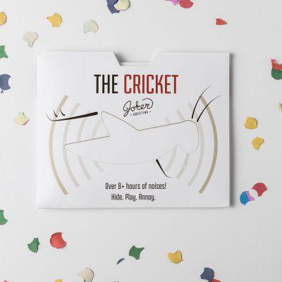 Verjaardagscadeaus voor 18 - De gegarandeerd vervelende kaart met krekelgeluiden