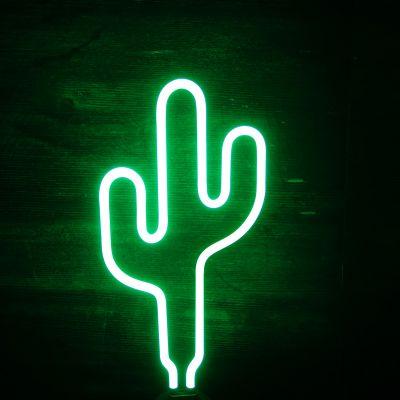 SOLDEN - Cactus neon lamp