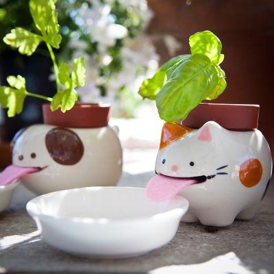 Kerstcadeau voor kinderen - Peropon dierenbloempot met watervoorziening