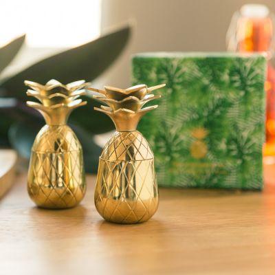 Kopjes & glazen - Ananas shotglaasjes van metaal