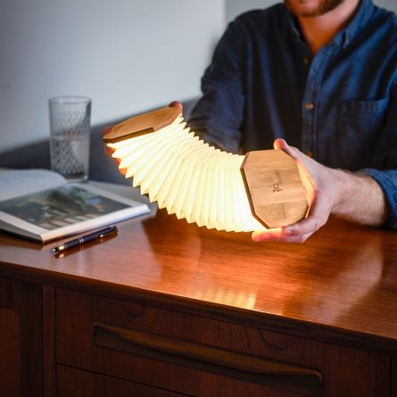 Gingko accordeon lamp