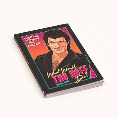 Sinterklaas surprise - What Would The Hoff Do? Buch