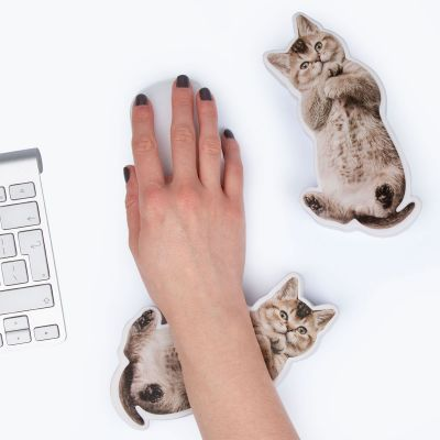 Speeltjes - Kat of hond polssteun en stress speeltje