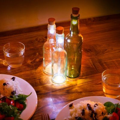 Tuinfeest decoratie - LED flessenlichten met USB