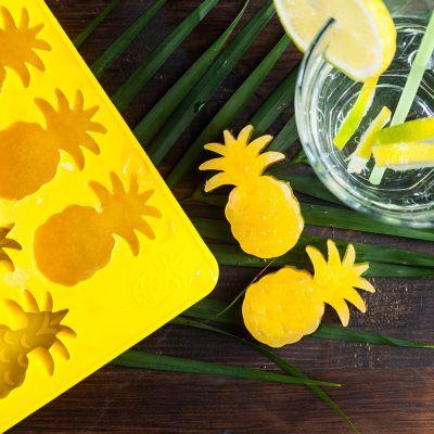 Tuinfeest decoratie - Ananas ijsblok vormen