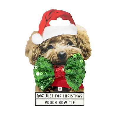 Sinterklaas surprise - Weihnachts-Halsband mit Fliege für Hunde