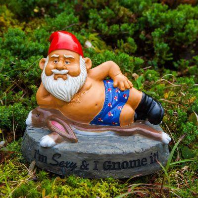 De aanstootgevende tuinkabouter